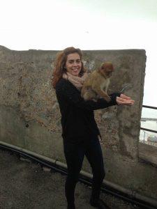 Gibraltar, monos